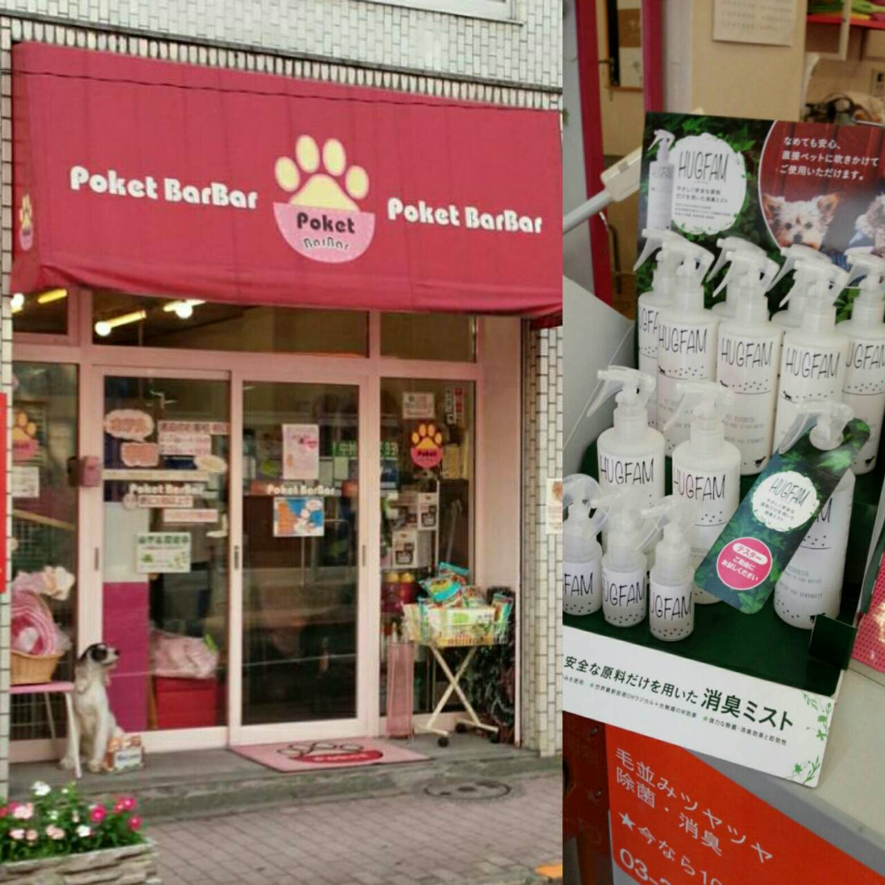 HUGFAM店頭販売情報/Pocket BarBar